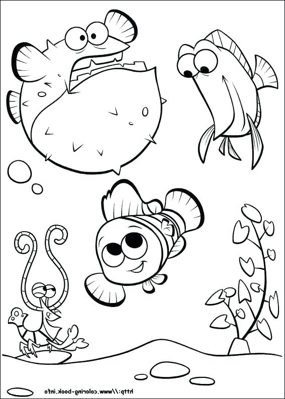 567x794 Nemo Coloring Pages Coloring Trend Medium Size Finding The Best