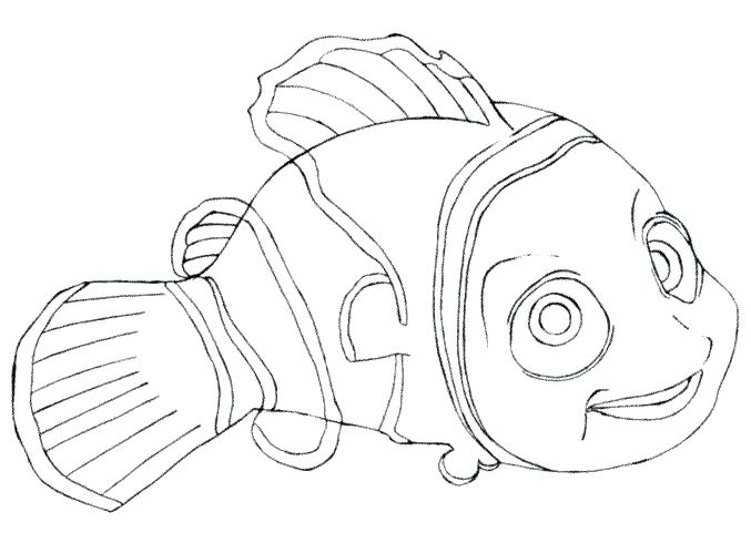 677x490 Nemo Colouring Pages Printable Coloring Finding Kids Poster