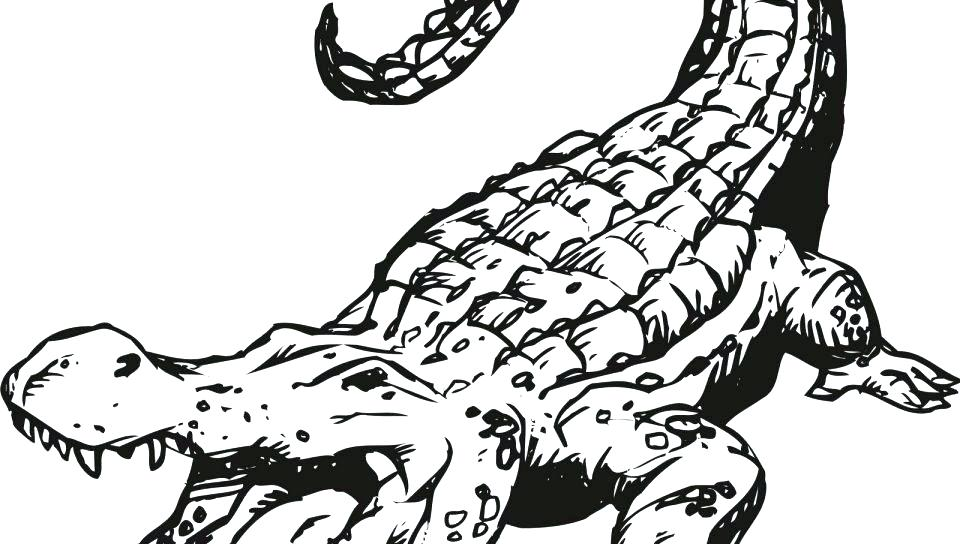 Croc Coloring Pages