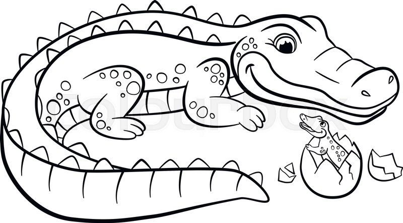 Crocodile Coloring Pages at GetDrawings.com | Free for ...