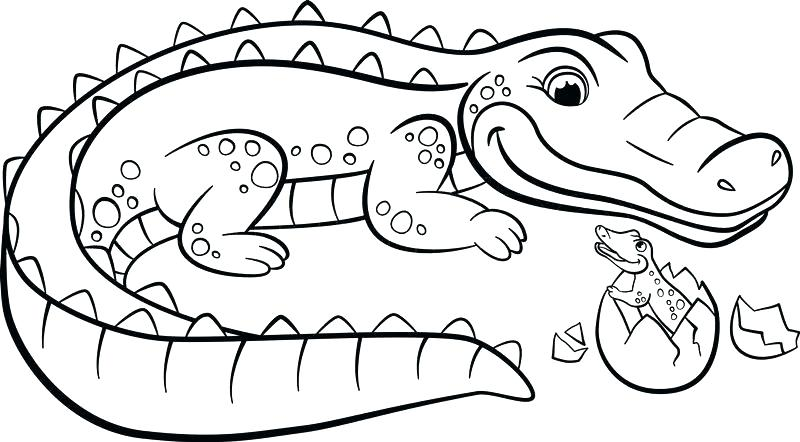 Crocodile Coloring Pages For Kids at GetDrawings   Free ...