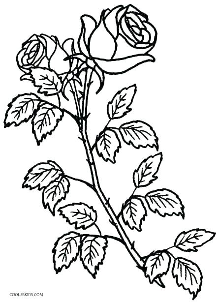 445x614 Coloring Pages Of Roses And Hearts Cross With Roses Coloring Pages