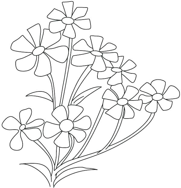 600x625 Free Coloring Pages Flowers Small Flowers Coloring Sheet Free
