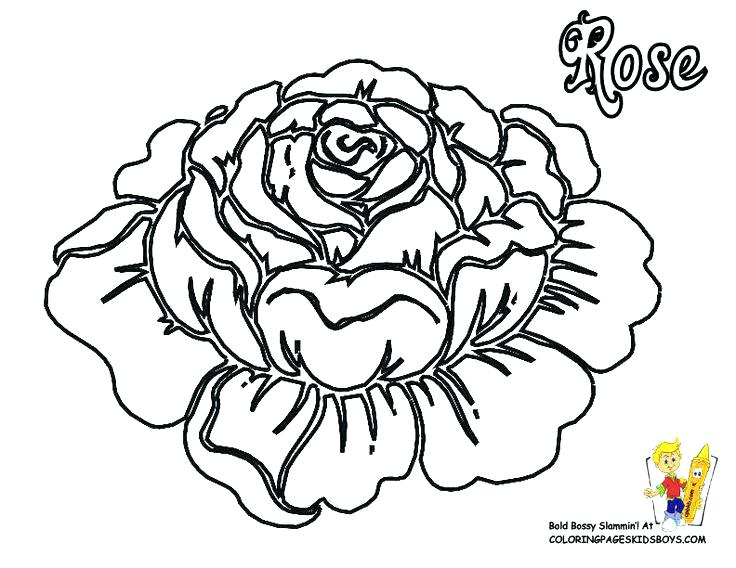 736x568 Coloring Pages Cross With Roses A Bee And Rose Page Beautiful