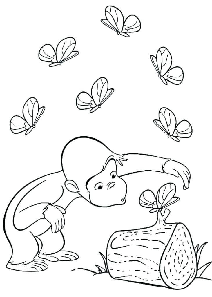 731x1024 Curious George Colouring Pages Free Kids Coloring Free Printable