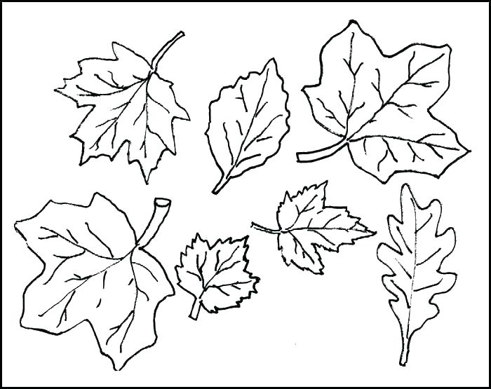 700x555 Cut Out Coloring Pages Cut Out Coloring Pages Cut Out Coloring