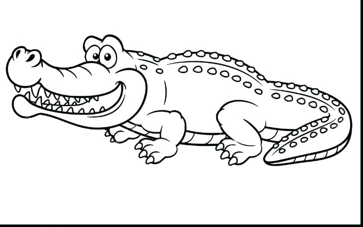 Cute Alligator Coloring Pages At Getdrawings Com
