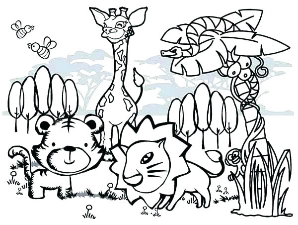 600x452 Jungle Animals Coloring Page Cartoon Animal Coloring Pages Cute