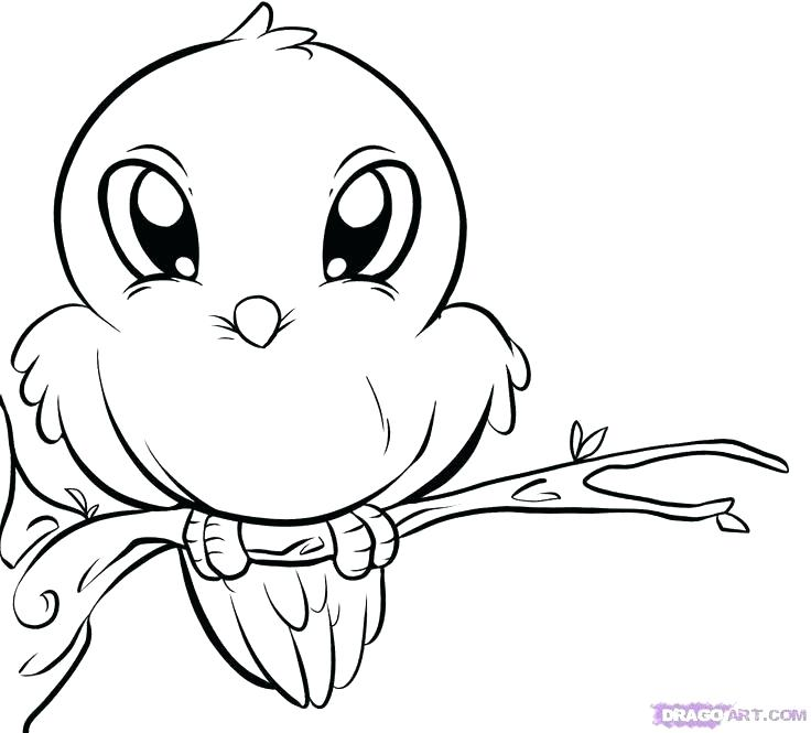 736x665 Cute Baby Animal Coloring Pages Together With Cute Baby Giraffe