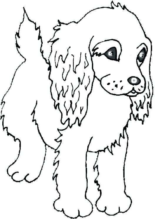 527x742 Baby Animal Printable Pictures Cute Animal Coloring Pages Plus