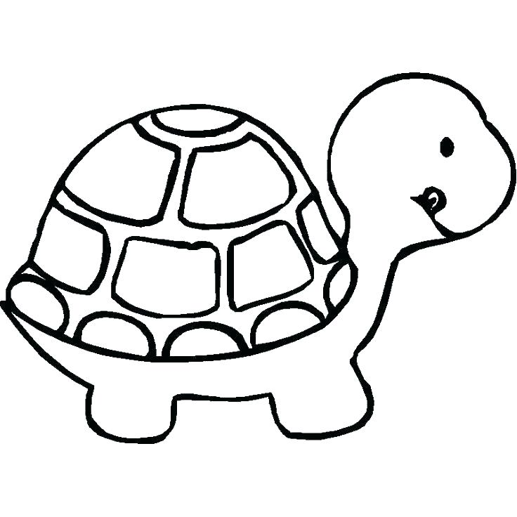 736x736 Cute Cartoon Animals Coloring Pages Zoo Animals Coloring Pictures