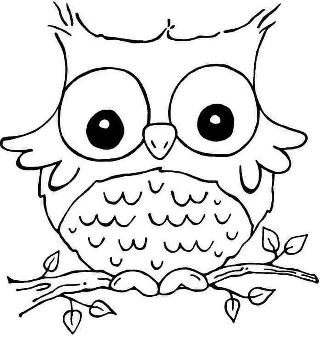 640x675 Cute Animal Coloring Pages For Girls With Big Eyes Colouring