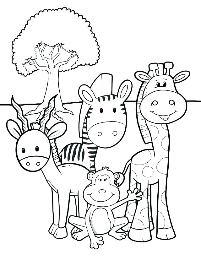 640x828 Coloring Pictures Of Baby Animals Cute Baby Animal Coloring Pages