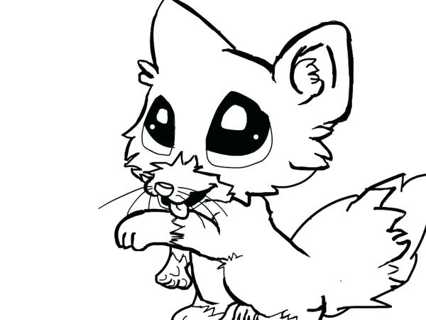600x450 Cutest Coloring Pages Cute Baby Animal Coloring Pages Animals