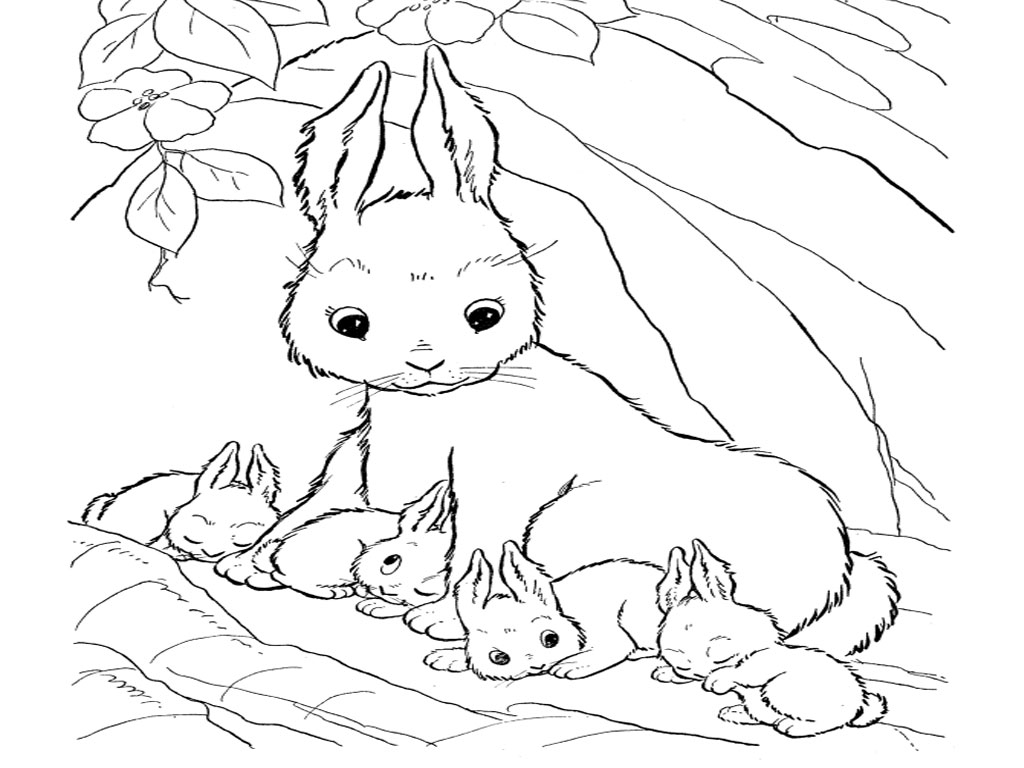 1024x768 Cute Baby Bunnies Coloring Pages