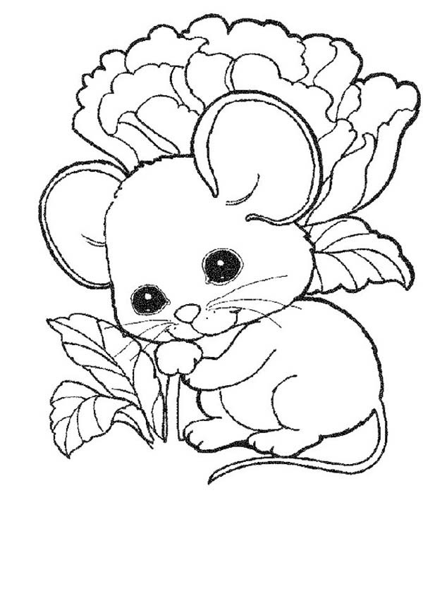 600x845 Cute Baby Coloring Pages Cute Mouse And Rat Ba Coloring Pages Bulk