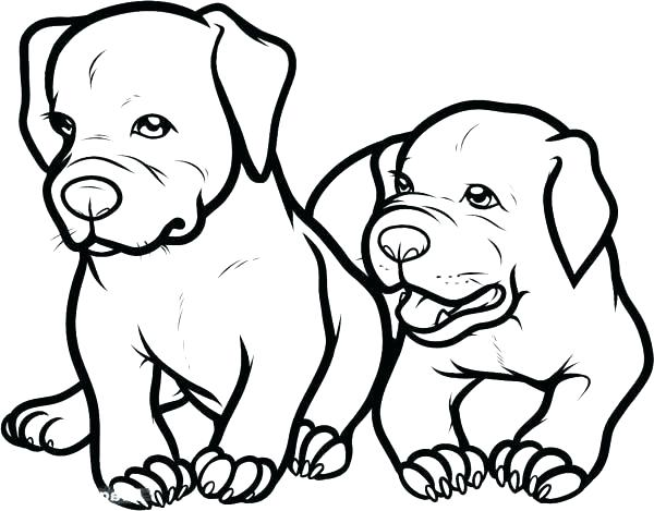 600x469 Baby Puppies Coloring Pages Puppy Face Coloring Page Cute Baby