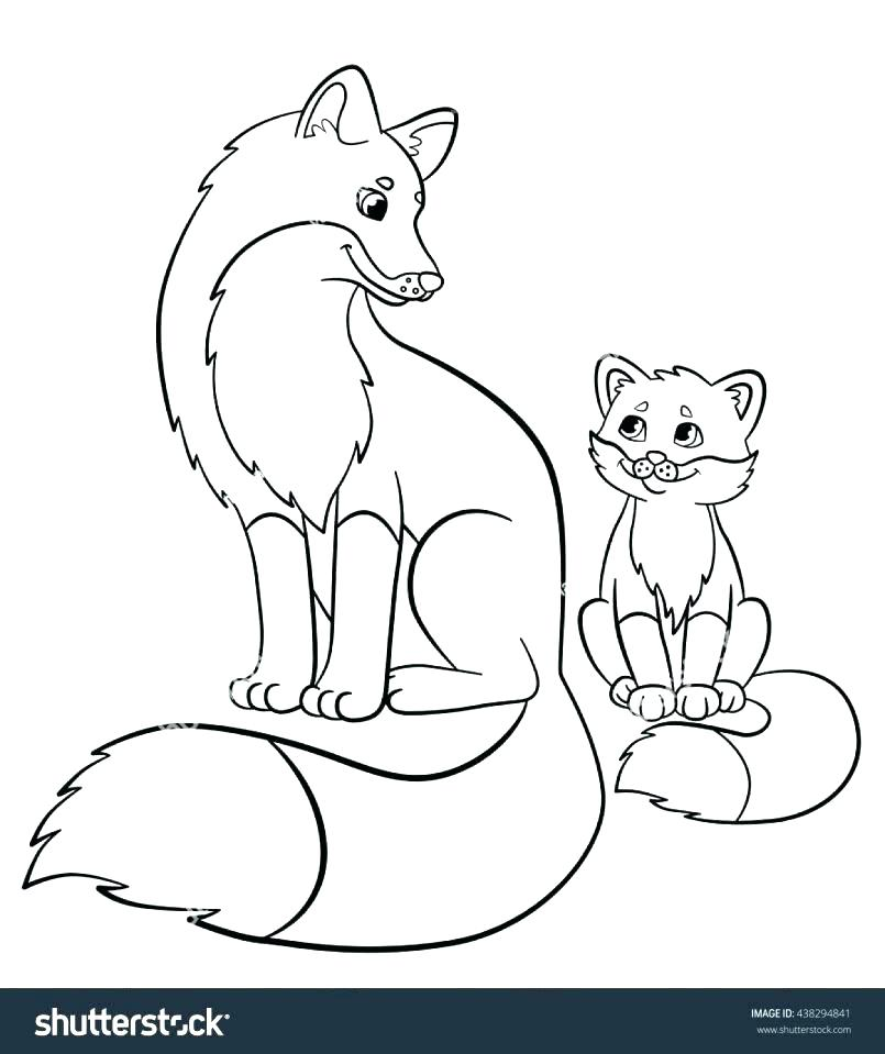 805x959 Coloring Pages Of Foxes Printable Coloring Page Fox Fox Coloring