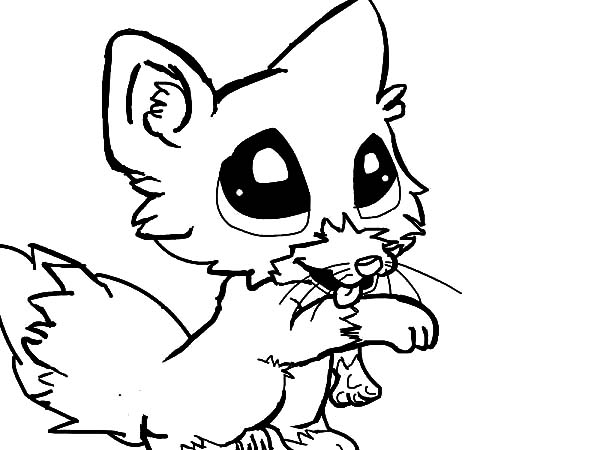 600x450 Cute Baby Fox Coloring Page