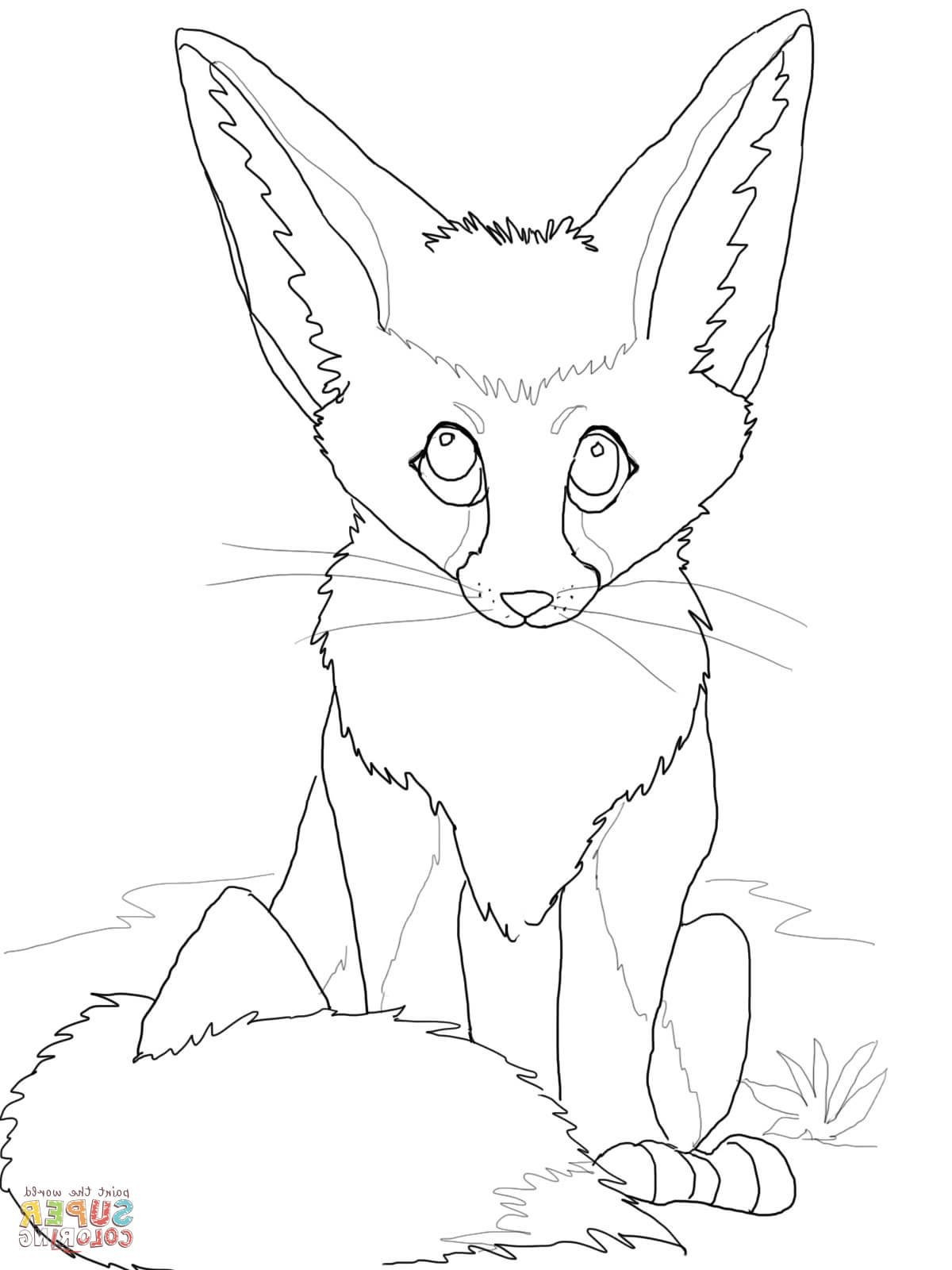 1200x1600 Lovely Baby Fox Coloring Pages Card And Coloring Page