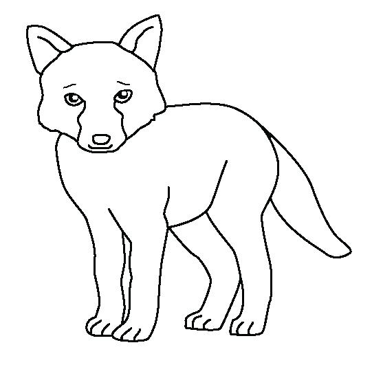 557x534 Fennec Fox Coloring Page Professional