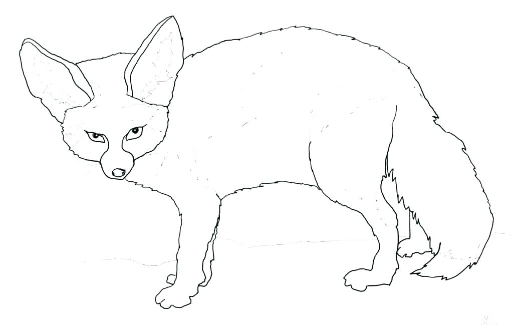 1024x669 Baby Fox Coloring Pages Fox Coloring Page Cute Baby Fox Coloring