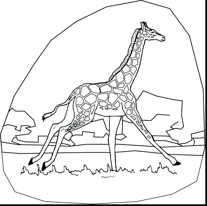 863x856 Cute Baby Giraffe Coloring Pages Printable Template