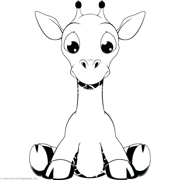 700x700 Cute Giraffe Coloring Pages Baby Giraffe Coloring Pages As Well As