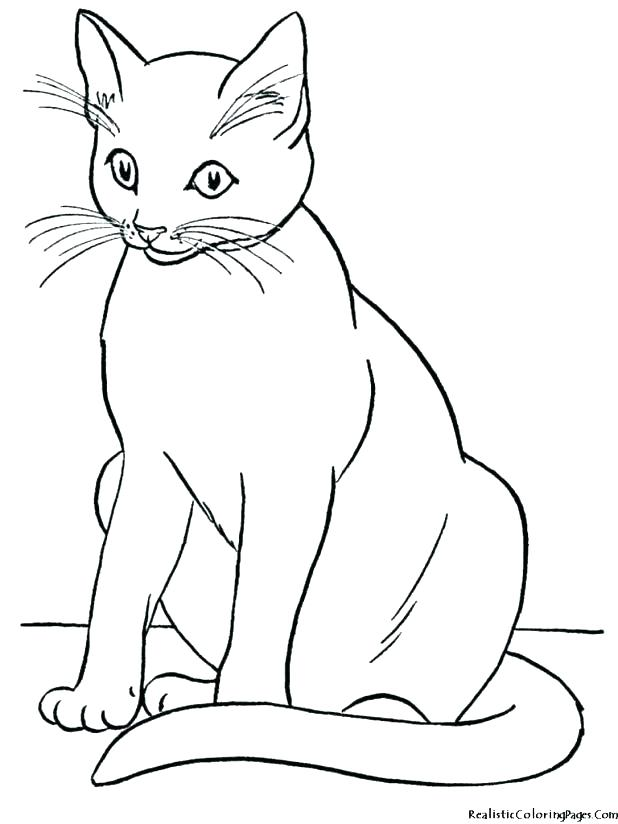 618x824 Coloring Page Kitten Coloring Page Cat Baby Cat Coloring Pages Cat