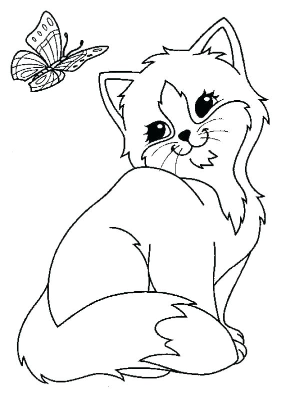 590x800 Cute Kitten Coloring Pages Kittens Coloring Pages Printable Kitten
