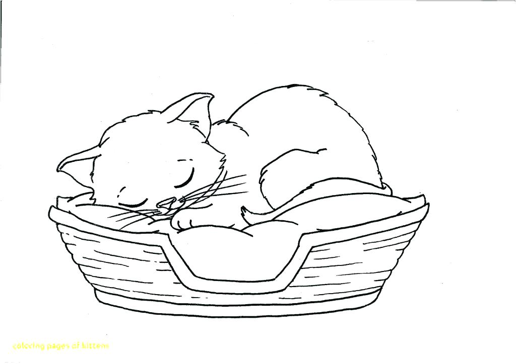 1024x724 Kittens Coloring Pages Pdf Coloring Pages Coloring Pages Packed
