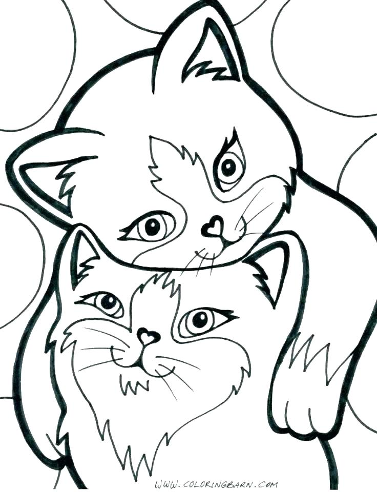 736x960 Cute Kittens Coloring Pages
