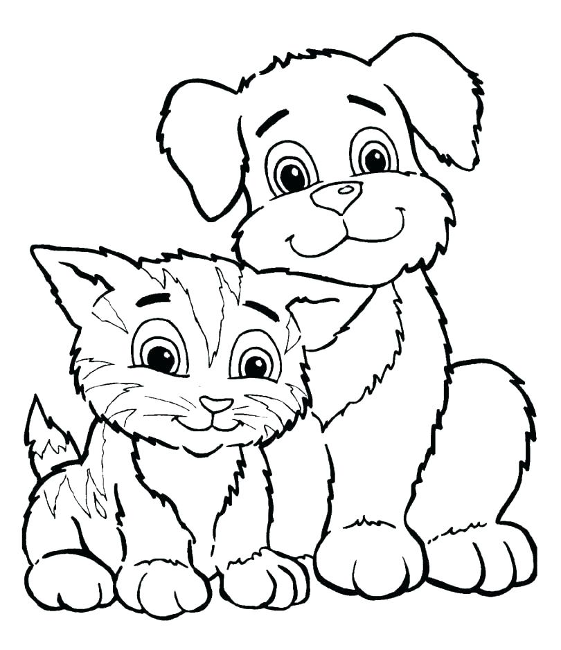 810x939 Kitten Coloring Pages