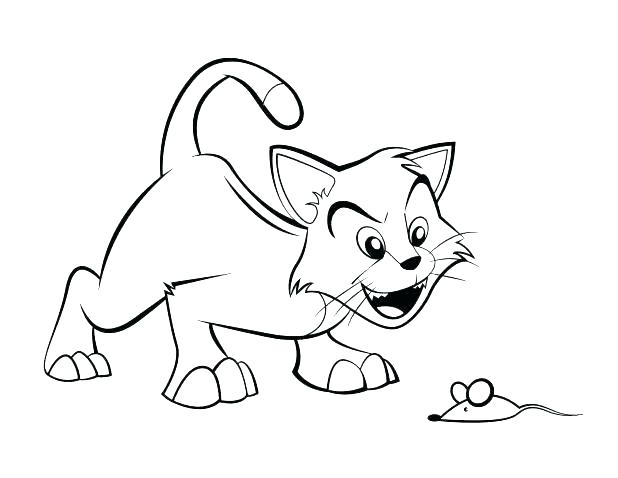 618x478 Realistic Kitten Coloring Pages Vanda