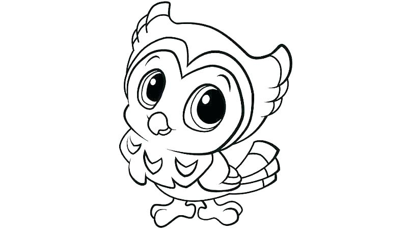 805x453 Cute Baby Penguin Coloring Pages