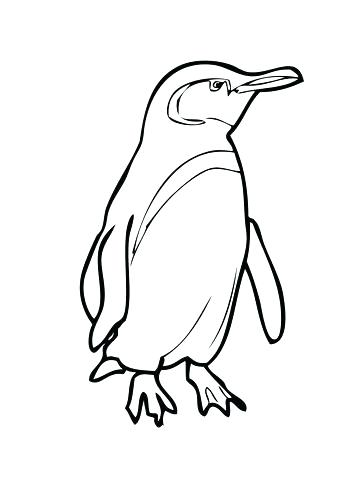 360x480 Baby Penguin Coloring Pages Appealing Baby Penguin Coloring Pages
