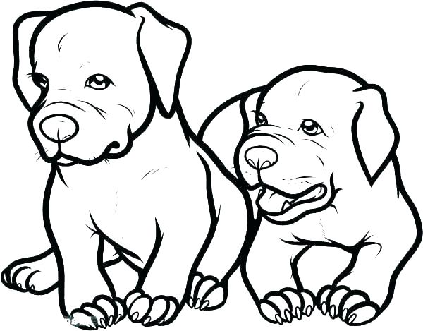 600x469 Coloring Page Minimalist Coloring Pages Best Of Dog Page Adorable