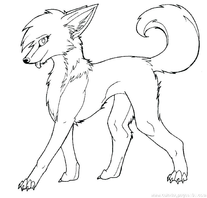 800x763 Cute Wolf Coloring Pages