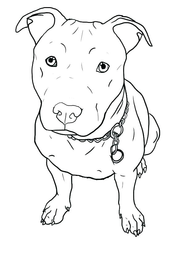 564x846 Baby Puppy Coloring Pages Dogs Color Pages Puppy Coloring Page