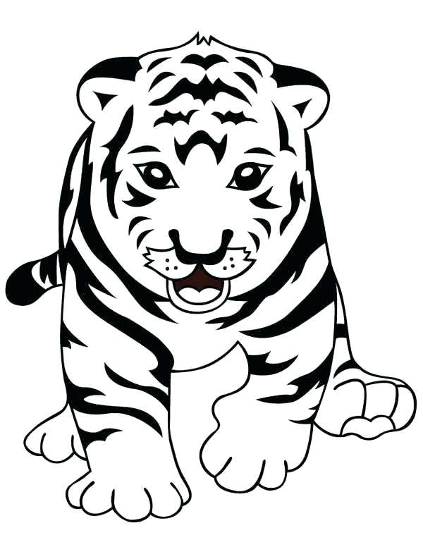 600x776 Cute Frank Tiger Coloring Pages Frank Tiger Coloring Cute Frank