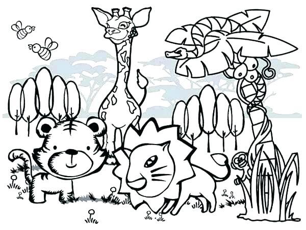 600x452 Jungle Animals Coloring Page Jungle Animal Coloring Sheets Jungle