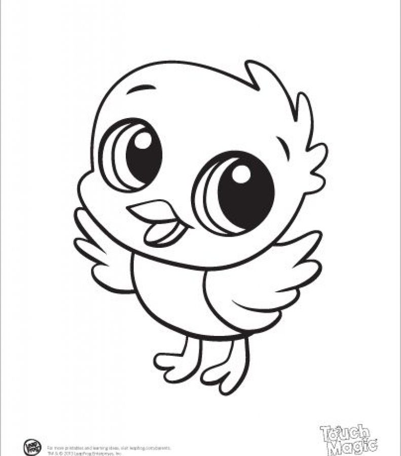 791x900 Babyls Coloring Pages Games Cute Farm Colouring Seal Free