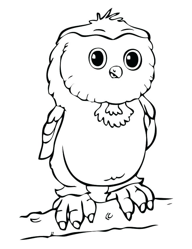 Cute Cartoon Owl Coloring Pages