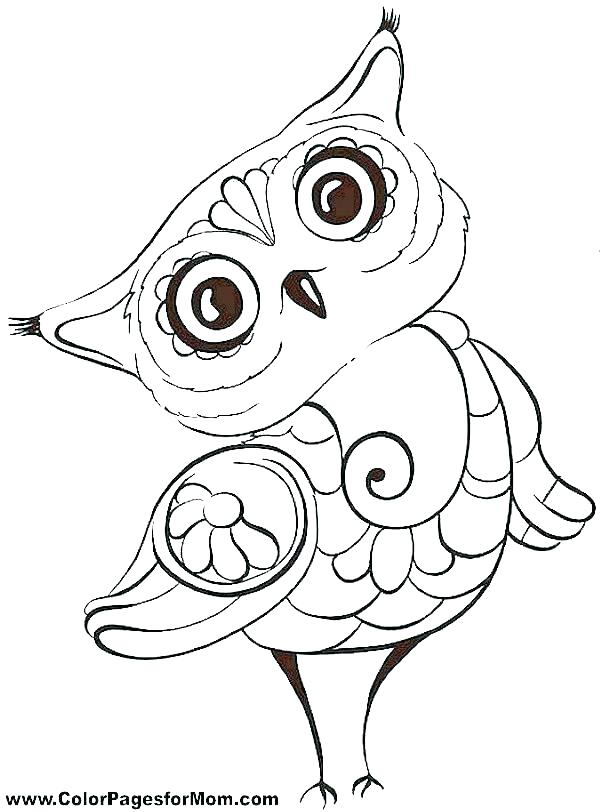 600x812 Owl Color Pages Trend Free Printable Owl Coloring Pages Image