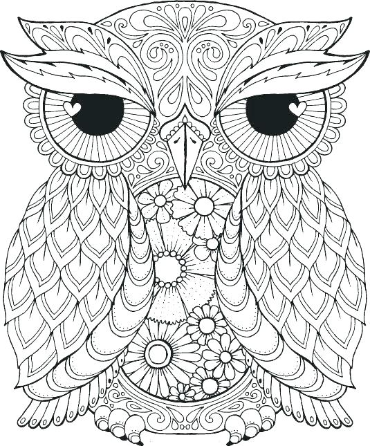 535x645 Baby Owl Coloring Pages Related Gallery Of The Cute Cartoon Baby