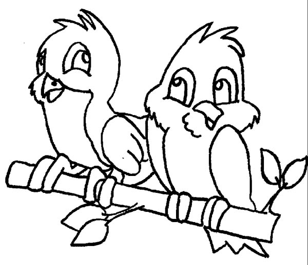 600x518 Cute Couple Of Robin Bird Coloring Page