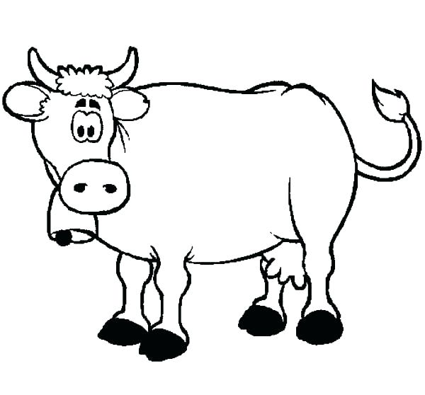 600x558 Coloring Pages Cow Coloring Pages Confused Dairy Cow Coloring