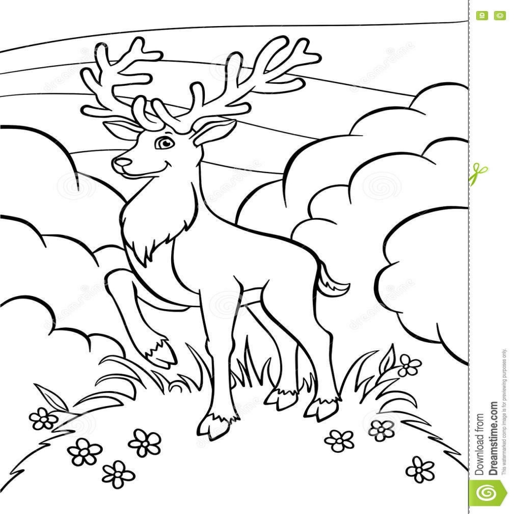 1024x1024 Coloring Pages Animals Little Cute Deer Stock Vector Throughout