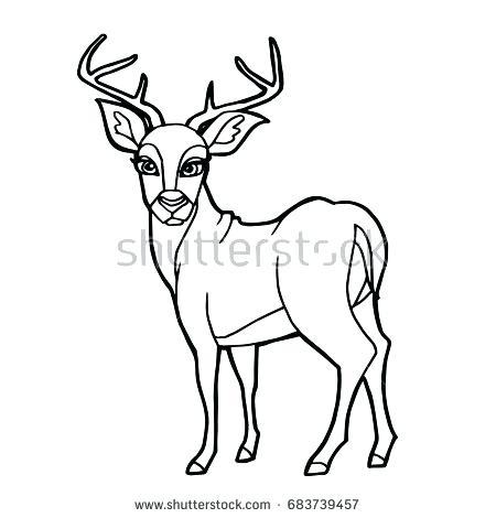 450x470 Deer Coloring Page Deer Coloring Page Free John Deere Coloring