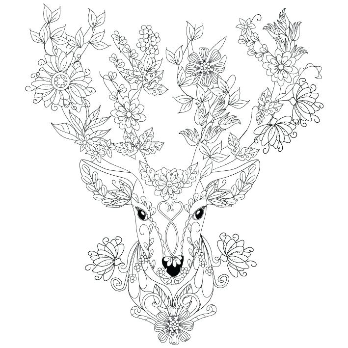 709x709 Deer Printable Coloring Pages Deer Coloring Picture Cartoon Cute